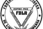 FDLR'S OVERVIEW: WHO WE ARE?