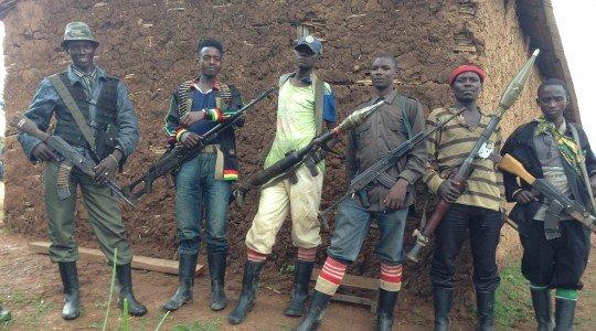 «TWIYEMEJE KUBOHOZA U RWANDA», FDLR-FOCA.